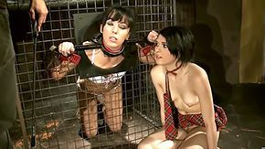 Free Madison Lovely HD porn Babe within hot outfit Madison was tied up by her mistress Miho Lechter totally made to do things that she did not wanted to Enjoy lascivious libidinous
