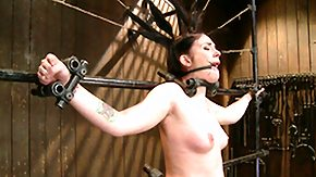 Florida, BDSM, Bondage, Bound, Florida